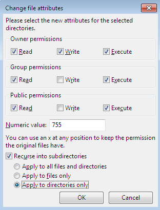 File Permissions In FTP